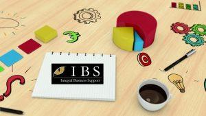 plan de negocios - IBS